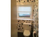 3 bedroom property to rent buckie in Douglas crescent.£500 pcm