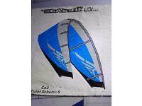 Cabrinha Co2 Kite Dart with Carbon Transfer Poles