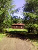 HUNTING CABIN ON 160 ACRES FOR SALE IN DEVON TOWNSHIP