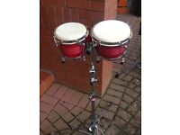 Bongos, hand drums with stand