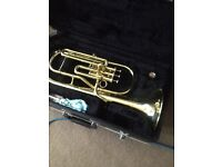 Saxophone & horn
