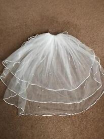 Pearl embellished veil