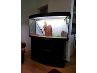4ft JUWEL VISION 280 LITER BOW FRONTED FISH TANK AND STAND FOR SALE