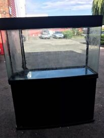 4 ft bow fronted aqua one fish tank with tropical marine setup