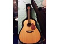 Ashton Acoustic Guitar + Hard Case