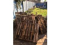 Pile of old pallets / firewood