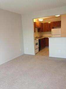 $500 Visa Gift for You: Apartment in the Heart of Nutana!