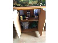 Complete fish tank with fish