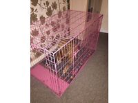 Extra large pink dog crate for sale. Excellent condition