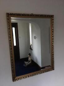 Various mirrors silver and gold frames
