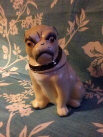 Antique Victorian English Staffordshire Pug Dog Tobacco Jar In Wonderful Condition