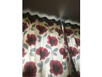 Red poppy next curtains.