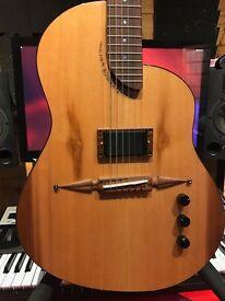 Rick Turner RS-6 deuce pickup guitar
