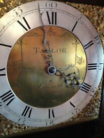 NICE LONGCASE CLOCK 30 HOURS TAYLOR OF PETWORTH