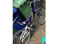 Magna Medium size Bike