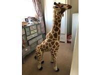 5ft giraffe stuffed toy