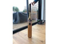Newbury TT cricket bat for sale