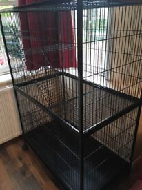 Animal activity cage