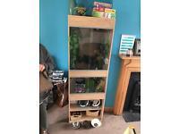 Full chameleon set up