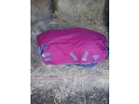 Saxon combo horse turnout rug 4' new
