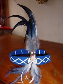 American Indian head dress