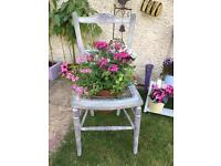 Shabby chic planter chair/seat