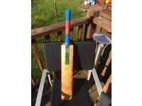 Millichamp and hall cricket bat for sale