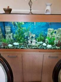 Fish Tank + all necessities + Cabinet