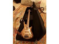 Bass guitar gig bag for sale