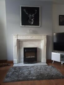 Electric fire, surround and background
