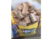 Firewood - chopped logs