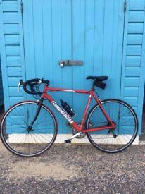 Raleigh Bike, for 180cm person, ASAP