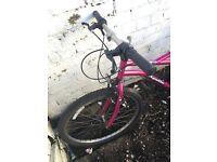"""26"""" Ladies Apollo Mountain Bike"""