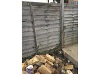 Rear garden fence pannel for sale total 11 pannel