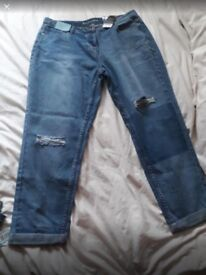 *BRAND NEW* size 16 NEXT Jeans
