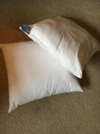 BRAND NEW! John Lewis cushion pads