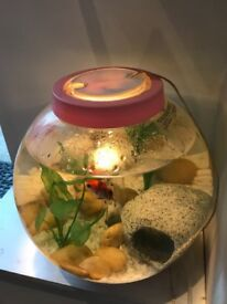 Baby Biorb 15L Fish Tank
