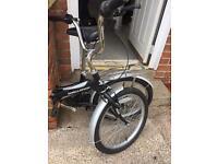 Challenge flex fold up bike