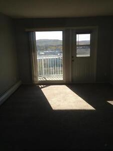 One Bedroom Suite with Stunning City Views - $675