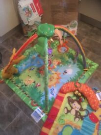Baby Jungle Gym and Mat