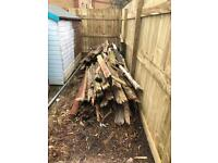 Free wood to a good home