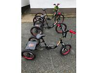 A trike / special needs/ tricycle/ kids : adults