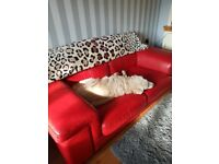 Italian red leather sofa £125