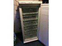 Standing freezer (deep freeze)