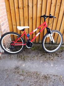 """Girls 24"""" bike"""