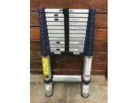 Telescopic Ladders - Extend To 3.8m