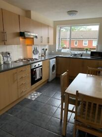 Cosy and bright double room available from Oct 26th