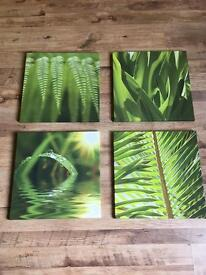 Four green nature canvases