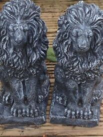 A pair of sitting lions