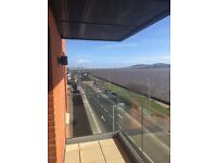 Flatmate wanted for Fourth floor, 2 bedroom flat by River Tay